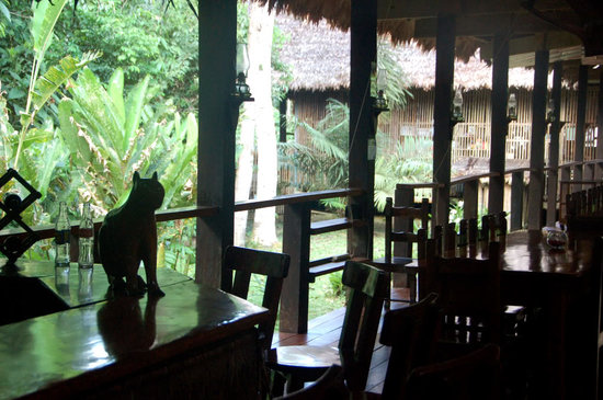 Posada Amazonas: bar and dining room