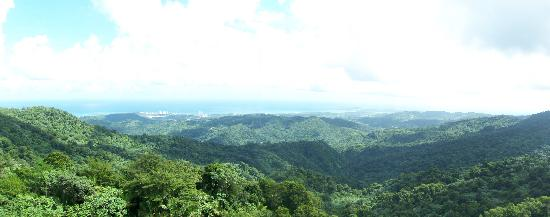 El Yunque National Forest, Πουέρτο Ρίκο: El Yunque