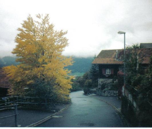 Triesenburg Liechtenstein - リ...