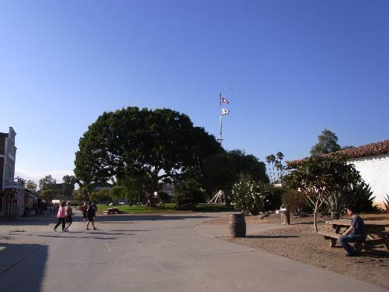 Old Town San Diego State Historic Park: 全景