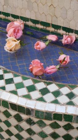 Dar Taliwint : Rose petals in the fountain