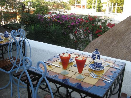 Tamarindo Bed and Breakfast: great breakfast on the terrace