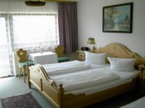 Hotel Alpenblick: De Kamers