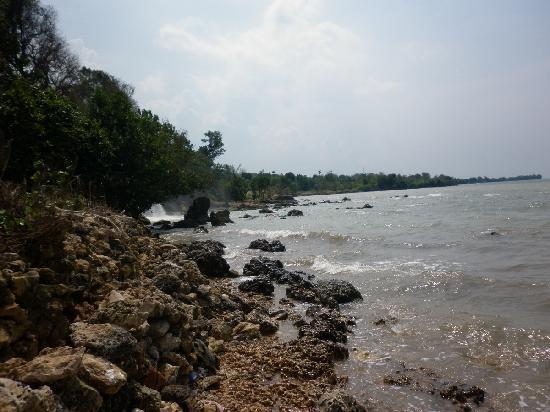 Toroan Waterfall: coral beach