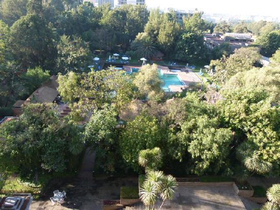 ฮิลตันแอดดิสแอบบาบาโฮเต็ล: Aussicht vom Zimmer auf Pool und Garten