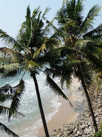 Sharanagati Yogahaus: black beach again