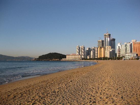 Haeundae Beach: 海雲台ビーチと高層ビル群