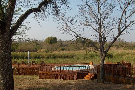 Sabie River Bush Lodge: View of Kruger Park from lodge