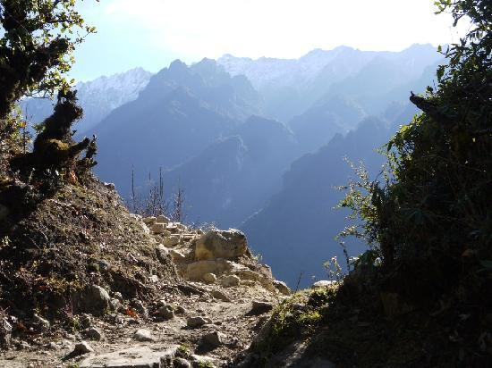 Jigme Dorji National Park (廷布) - 評論 Jigme Dorji National Park