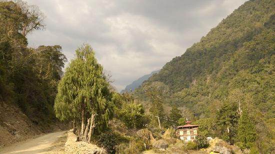 Jigme Dorji National Park : typical terraced farm, JDNP