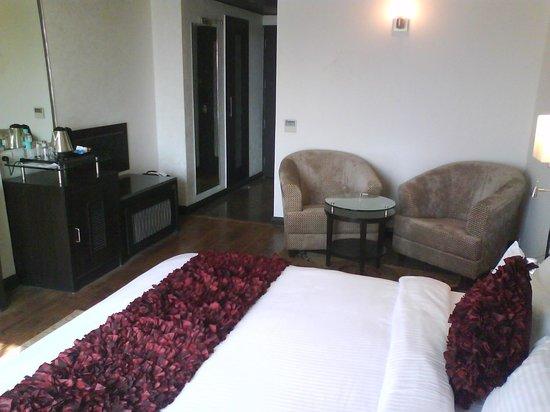 Chandigarh Ashok: Room - View 2
