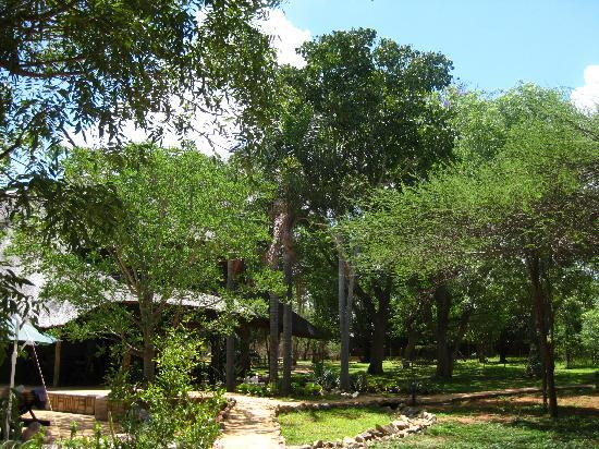 Kubu Safari Lodge: Anlage