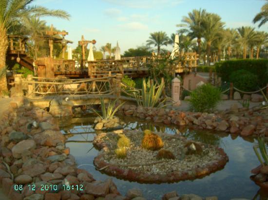 Sharm Dreams Resort: Caribi Bar in Hilton Sharm Dreams