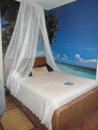 Coqui del Mar Guest House: main room
