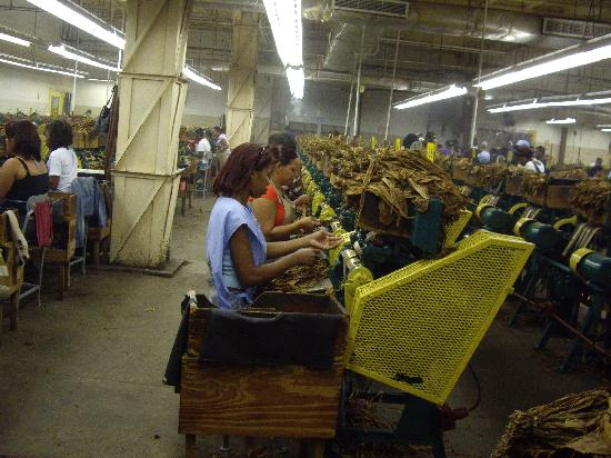 Tabacalera de Garcia Factory Tour: 4700 workers making perfect hand rolled cigars at the Altadis Factory in La Ramana