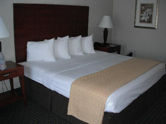 BEST WESTERN St. Augustine I-95: Bed