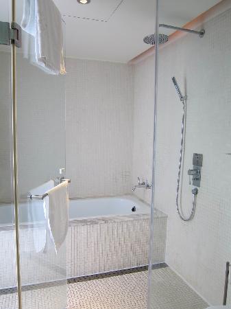 Ambience Hotel: Bathroom
