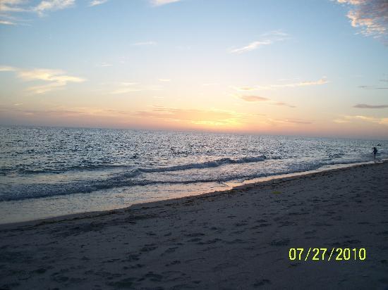 The Beachcomber: sunset