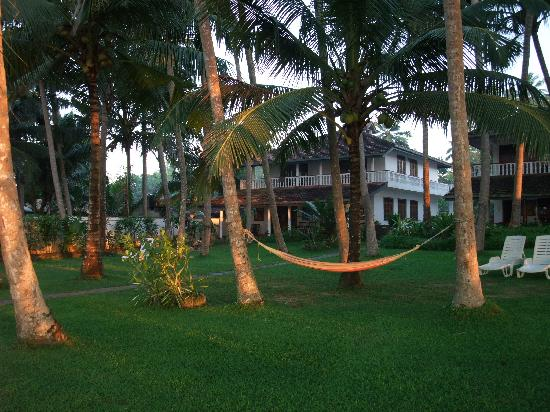 Rockside Cabanas Hotel: Across the garden