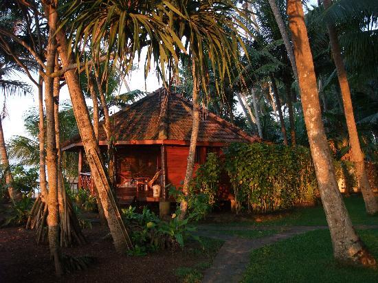 Rockside Cabanas Hotel: Sunrise by the cabana