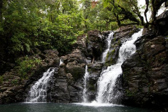 พาราไดซ์ ทาวูนิ: Third waterfall at Bouma