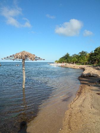 La Sirena de Camp Bay : Beach view