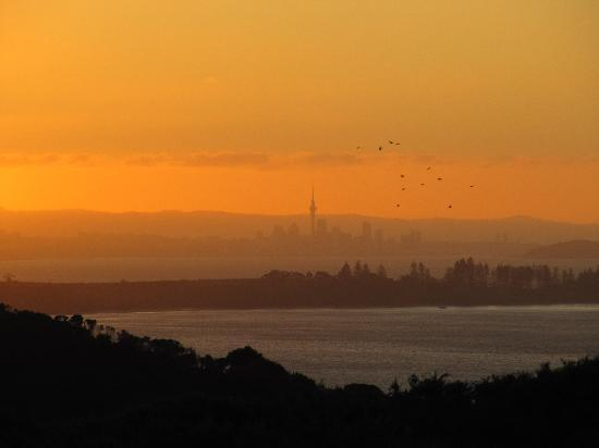 View43 & Citylights : Auckland from Waiheke