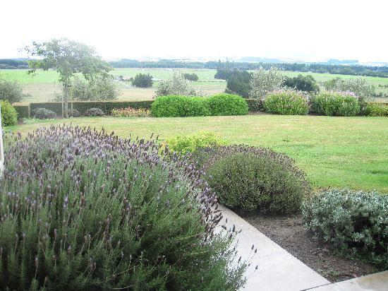 Longview Farmstay Bed and Breakfast: Lavender @ Longview Garden