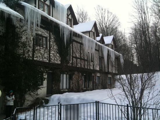 Boyne Highlands Resort: Bartley House