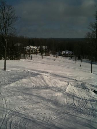 Boyne Highlands Resort: ski run