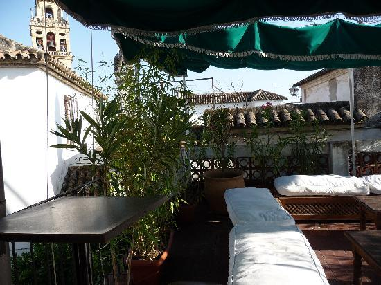 Hostal Seneca: terrazzo