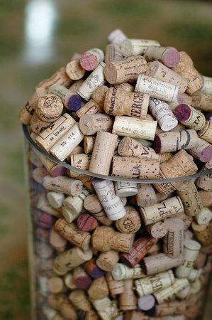 罗马vino酒窖