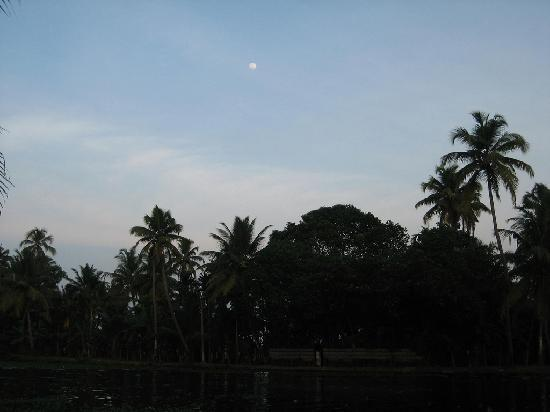 Palmgrove Lake Resort: Nightfall across the canal with a woman standing in the door of her house