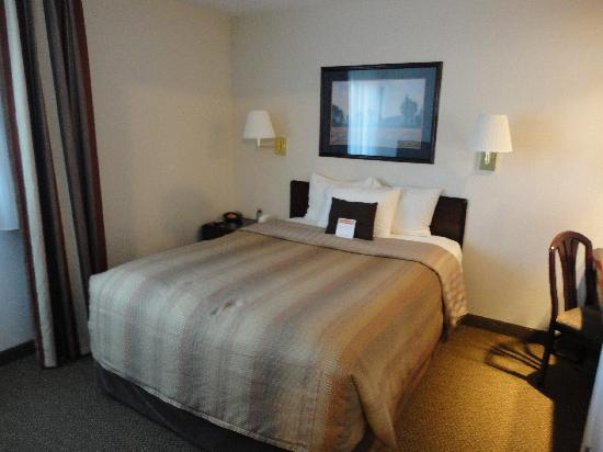 Candlewood Suites Denver - Lakewood: suite