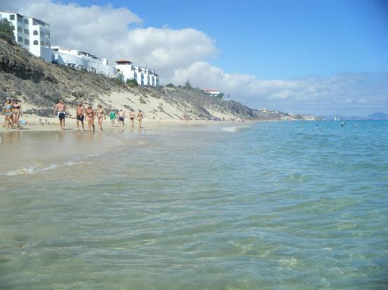 TUI MAGIC LIFE Fuerteventura : Another beach view