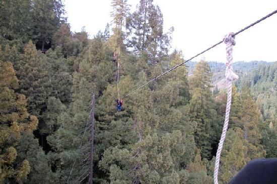 Sonoma Canopy Tours: Zip-ling thru the tree tops