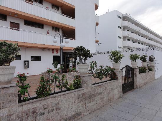 Apartamentos tenesor playa del ingl s spanien omd men tripadvisor - Apartamentos monterrey playa del ingles ...