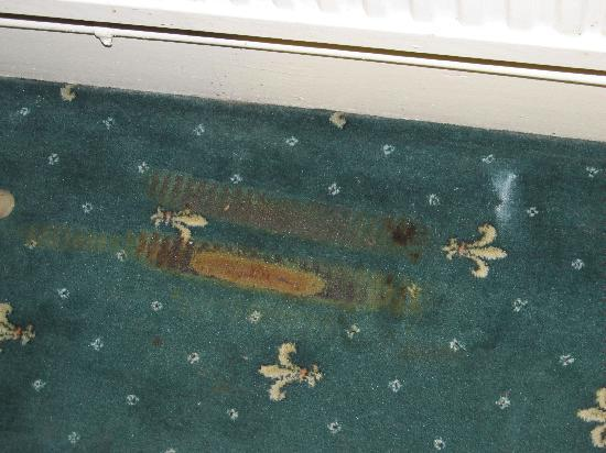 Camelot House Hotel: Burns in the carpets