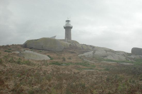 Surfbeach Holiday Park: Montague Island Lighthouse