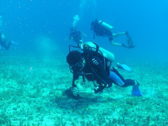 Scuba S.cool Diving Center: Rudolfo