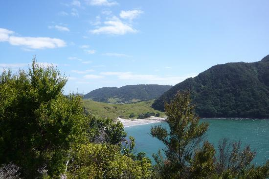 Whangarei, New Zealand: Smugglers Bay from Busby Head
