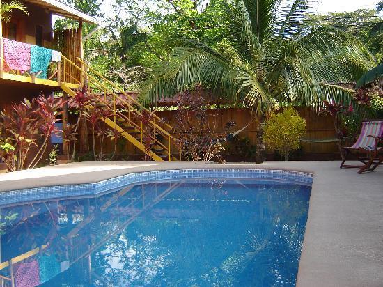Samara Palm Lodge: La piscine