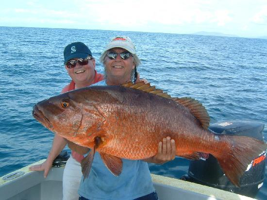 La Paloma Lodge: Red Snappers come in pretty packages.