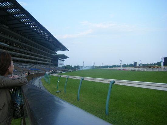 Tokyo Horse Racetrack : ♥人生を駆け抜けたい人へ♥