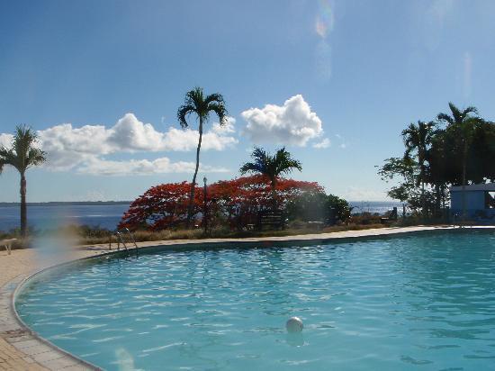 Coral Ocean Golf Resort : プール