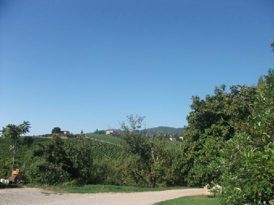 Agriturismo Casanova - La Ripintura: View outside the gate