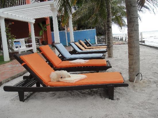 Grace Boutique Resort: beachfront