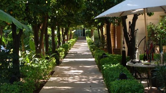 Les jardins de la medina picture of les jardins de la for Le jardin de la medina