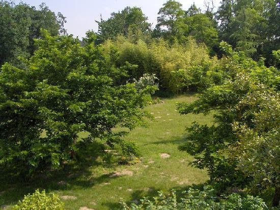 Les Bois d'Esves: The garden at the back of the house