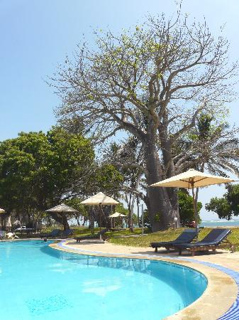 Coral Beach Cottages: Piscine, baobab et ocean indien